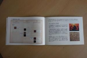 図録_バリ絵画の歴史
