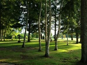 蓼科湖畔の彫刻公園