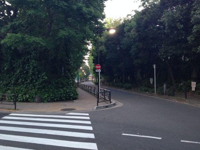 上野公園の北側。東京芸大音楽部の校舎があるあたり。ここもとても雰囲気のある場所です。