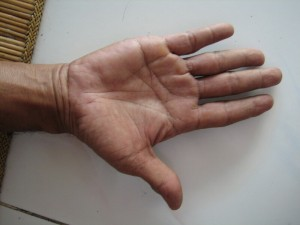 ソキさんの大きく力強い手。この手が絵筆を持ち作品が生み出されます